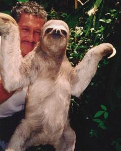 Top 10 Unusual Pets - Sloth