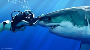 Top 10 Bucket List Ideas - Go Scuba Diving