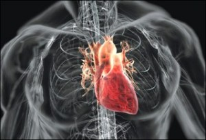 Top 10 Causes Of Death - The Number One Killer... Cardiovascular Disease